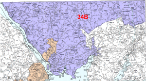 The old District 34B contained much more of western Cecil county than the new 35A. Del. Rudolph took 49% of the vote in this district.
